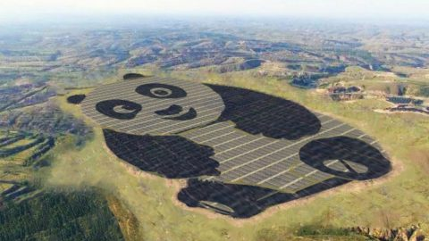 The Shapes of Photovoltaic Plants