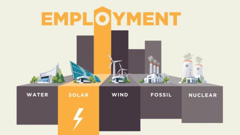 Employment in the  Renewable Energy sector worldwide