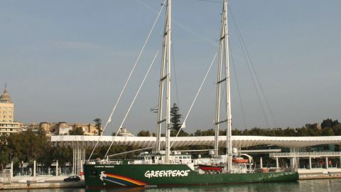 Rainbow Warrior en Málaga